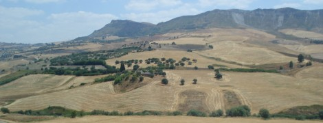 View from the bus as I cross Sicily from Palermo to Catania