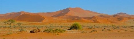 Red sand everywhere!