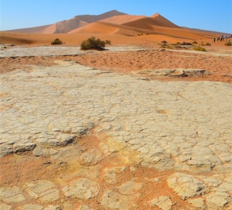 The white crust over the red sand is what makes Deadvlei so unique