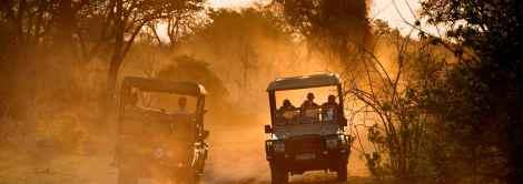 Dusty open-air sunset safari through Chobe National Park, Botswana