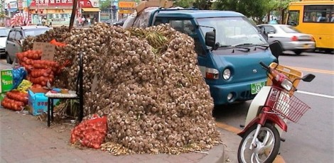 This is how they sell garlic during garlic season