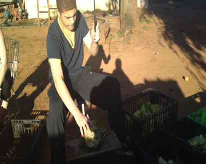 Preparing food for the monkeys
