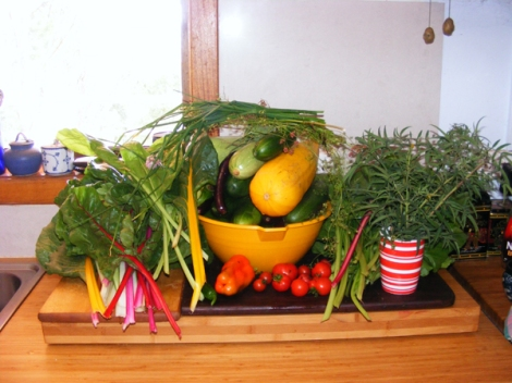Some of what we harvested from our garden and herbs that we collected from a community orchard/herb garden. Just to clarify, we have only grown veggies since last year