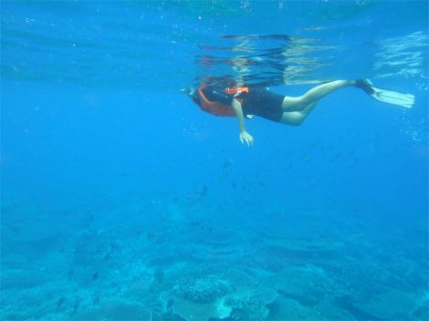 Taking time out to snorkel helped calm my mind a bit